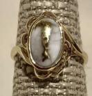 Ladies Gold in Quartz Ring RL754Q(B)